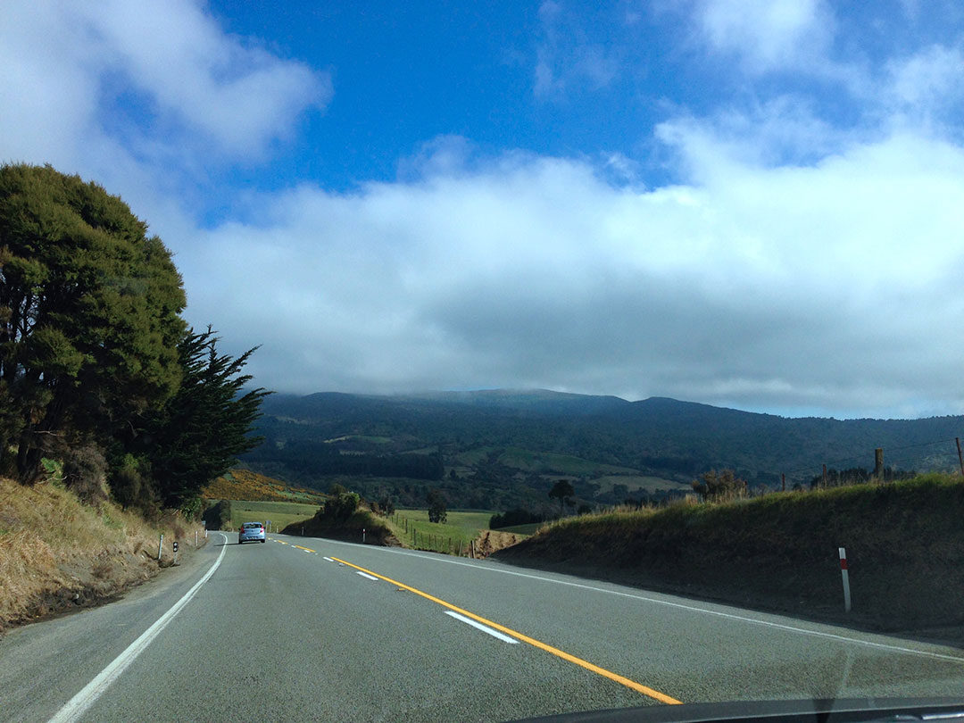 Driving through the countryside in New Zealand
