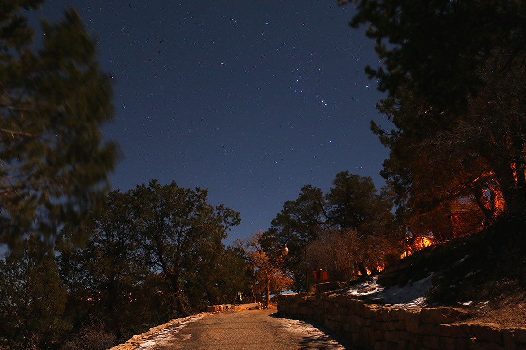 Dimly lit path along the edge of the Grand Canyon South Rim at night with trees lining the edge and stars glistening