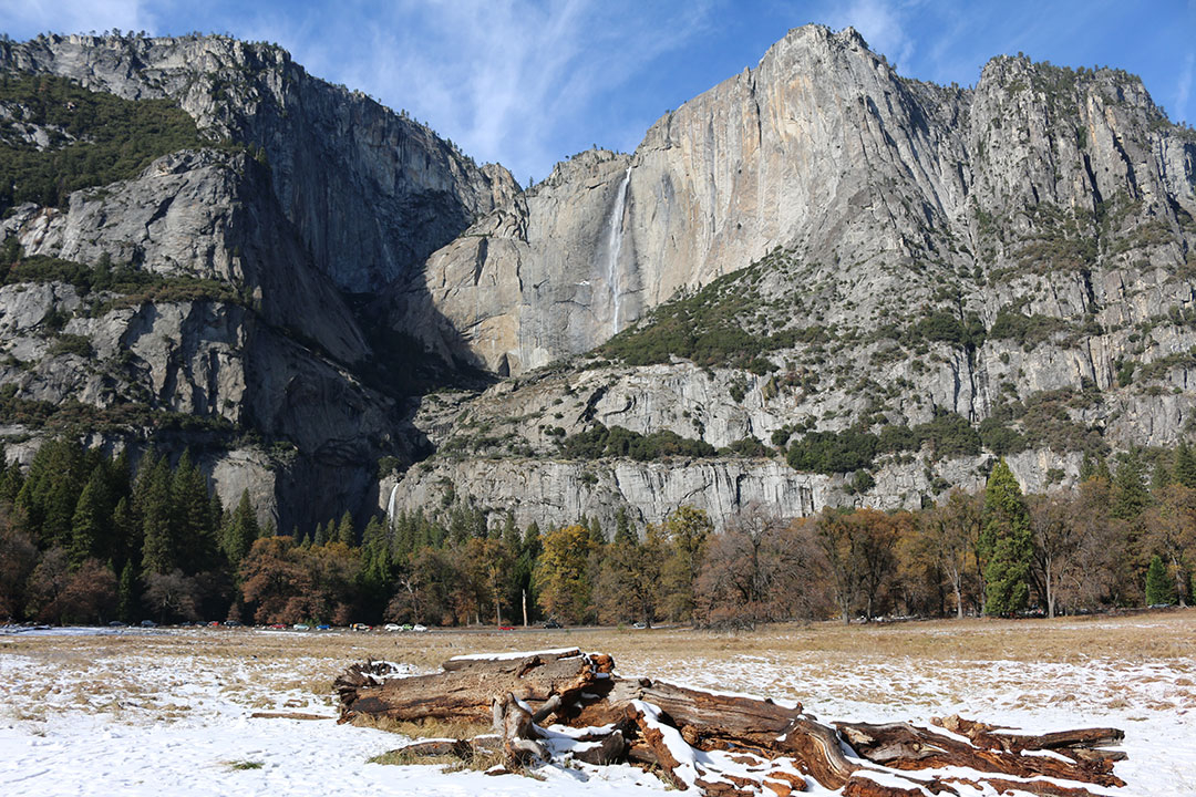 Upper and Lower Yosemite Falls against a blue sky background with snow covered brown logs and sticks in the foreground
