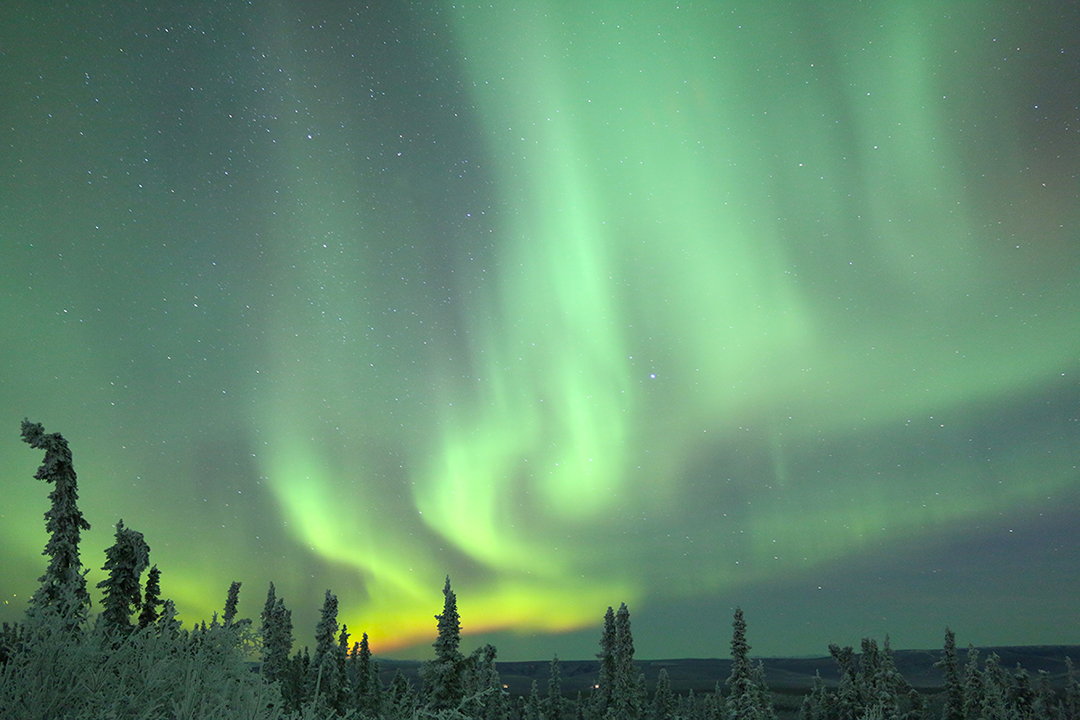 The northern lights dancing in the skies of Fairbanks , Alaska USA