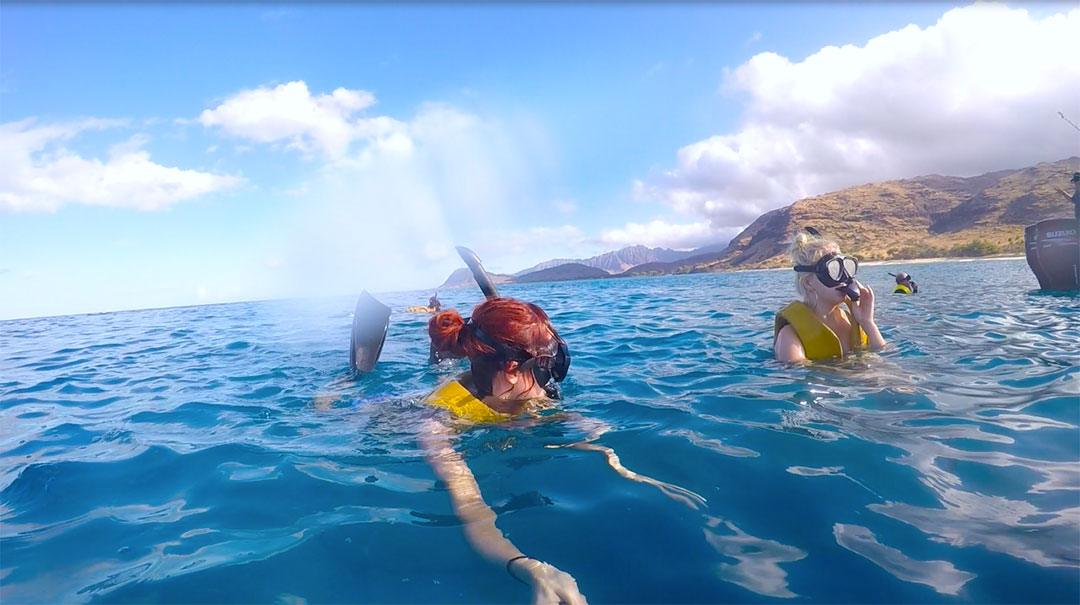 Friends snorkelling looking for wild dolphins in Hawaii