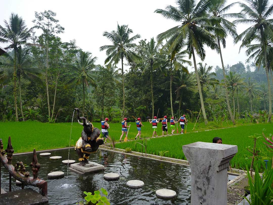 A group of white water rafters walking out through the rice paddy fields with helmets on and oars in hand while beside an elephant water feature