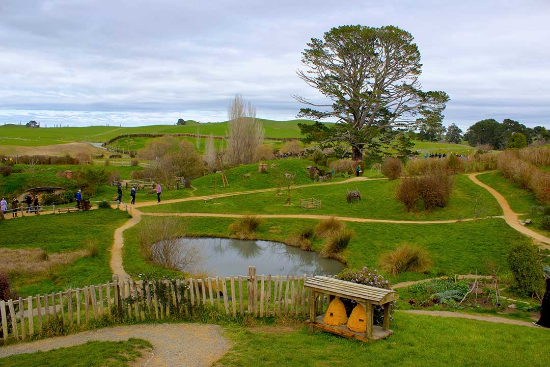 Lake in Hobbiton surrounded by green fields and small hobbit houses, part of the Lord of the Rings Set in Matamata New Zealand
