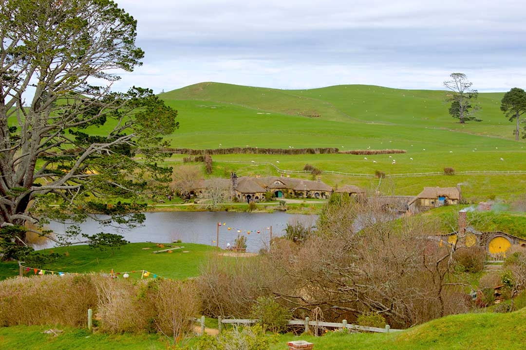 Wide open green fields of Hobbiton from Lord of the Rings in Mata Mata New Zealand