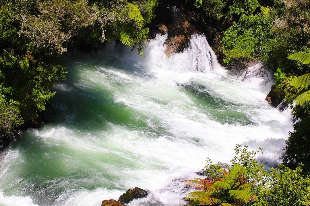 Some of the amazing rapids near Rotorua New Zealand where Mum and I went white water rafting