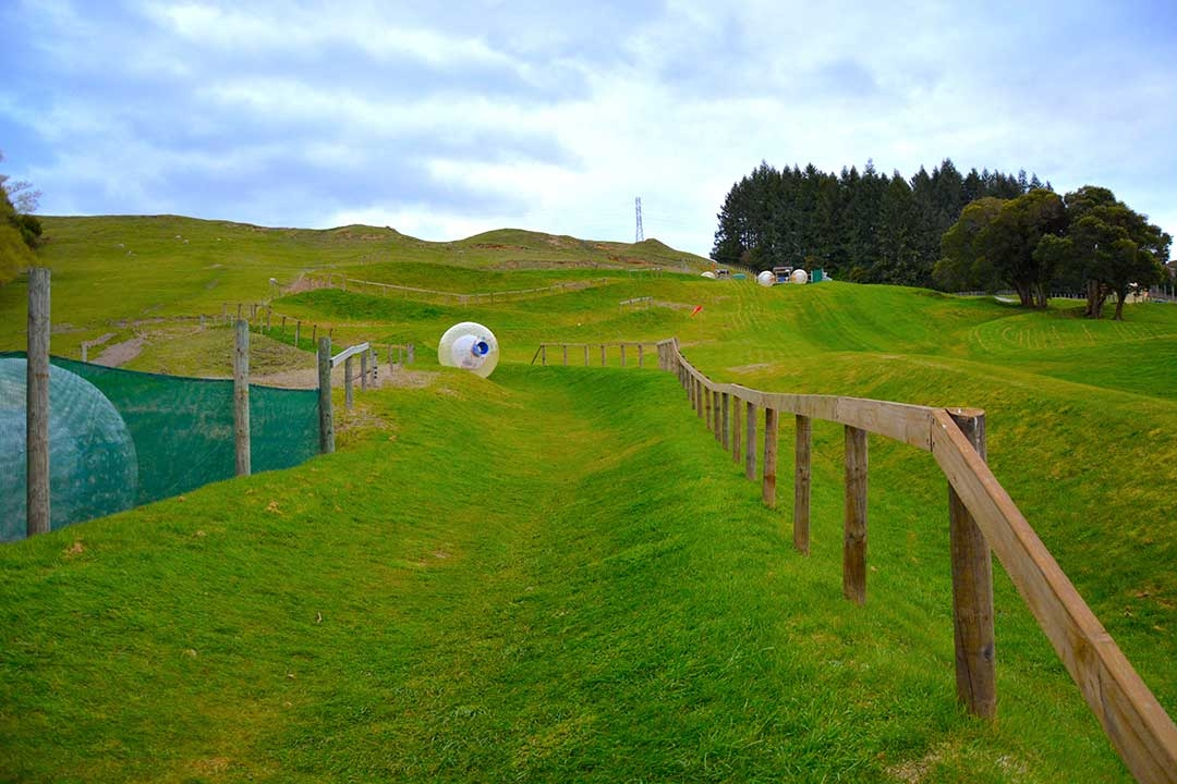 Our OGO zorbing ball rolling down the grassy zigzag path in Rototua, New Zealand