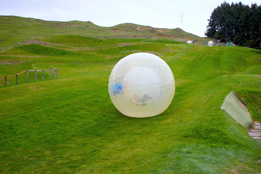 Our OGO zorbing ball rolling to a stop after coming down the grassy zigzag path in Rototua, New Zealand