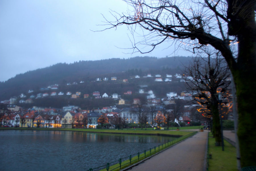 Bergen Lake on a rainy winter day in Norway with colourful houses in the background and bare trees with fairy lights
