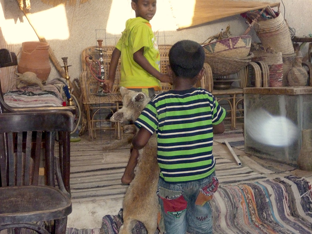 Everyday life inside a Nubian Village mud brick home with children playing with scary stuffed animals