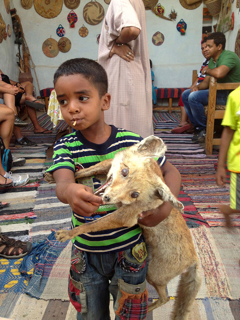 Local Nubian village boy with his scary stuffed animal toy inside his home decorated with rugs and wall ornaments in Egypt