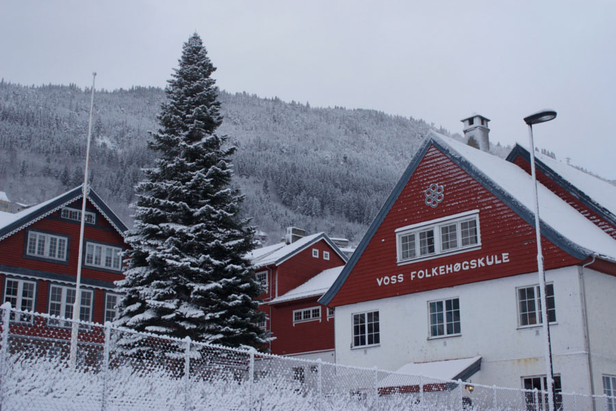 Red and white houses covered in snow in Voss, Norway during winter with a giant snow covered tree