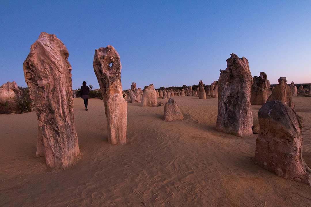 The Pinnacles in Western Australia at sunset