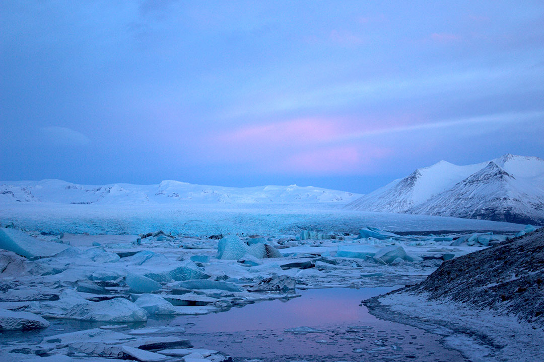 Jokulsarlon Glacier Lagoon at sunrise with pink skies and icebergs